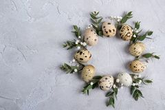 Circle border for easter card or invitation. Easter wreath with easter quail and leaf sprigs of eucalyptus. On a gray concrete bac. Kground with place for text royalty free stock photos