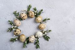 Circle border for easter card or invitation. Easter wreath with easter quail and leaf sprigs of eucalyptus. On a gray concrete background with place for text stock images