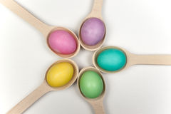 Circle of colorfull easter eggs in wooden spoons isolated on white Stock Image