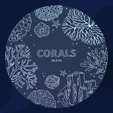 Circle coral underwater concept in a line art royalty free illustration