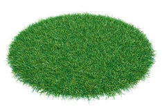 Circle covered with green grass Royalty Free Stock Image