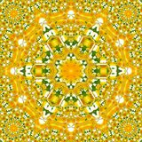 Rotate circle dandelion and camomile kaleidoscope spring picture effect tile sun Royalty Free Stock Image