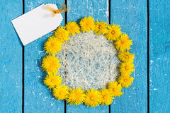 Circle of dandelions and card for your text Stock Photo