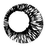 Circle design Royalty Free Stock Image