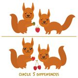 Circle 5 differences Educational Game for Preschool Children Picture puzzle: Find the five differences between the two pictures Fu. Nny squirrel with raspberry Royalty Free Stock Photos