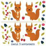 Circle 5 differences Educational Game for Preschool Children Picture puzzle: Find the five differences between the two pictures Fu. Nny squirrel with leaves Royalty Free Stock Photos