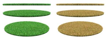 Circle dry grass. Stock Photo