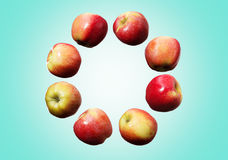 Circle of falling red and yellow apples in the air on cyan background royalty free stock photography
