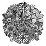 Circle flower ornament Royalty Free Stock Photos