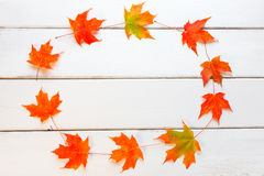 Circle frame of autumn maple leaves with copy space for your tex Stock Images