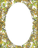 Circle Frame Background with Decorated Borders. White circle frame background with decorated design borders Royalty Free Stock Photography
