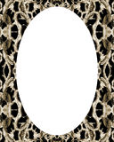 Circle Frame Background with Decorated Borders Royalty Free Stock Photos