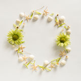 Circle frame background from summer elements - seashell, starfishes, flowers Stock Image