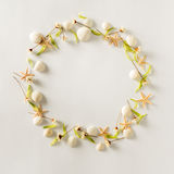 Circle frame background from summer elements - seashell, starfishes, flowers Royalty Free Stock Photography