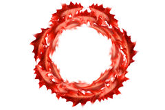 Circle frame from bordeaux leaves Royalty Free Stock Photography