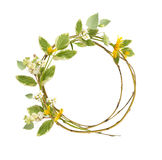 Circle frame from branches and flowers Stock Photos