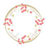 Circle frame decorated with green leaves and red berries Royalty Free Stock Photos