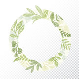 Circle frame with green branches and leaves Royalty Free Stock Photos