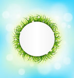 Circle frame with green grass, chamomiles on sky Stock Photography
