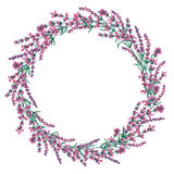 Circle frame of hand drawn lavender flowers. Stock Photography
