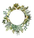 Circle frame with leaves, succulent and golden elements in watercolor style. Eucalyptus, magnolia, fern and other stock illustration