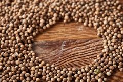 Circle frame made of coriander seeds on the rustic wooden background, close-up, top view, macro, selective focus. Some copy space for your inscription. Natural Royalty Free Stock Photo