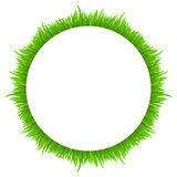 Circle frame made of grass  on white. Fresh spring, summer green grass border for your design. Royalty Free Stock Photo