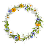 Circle frame from spring flowers Royalty Free Stock Photos