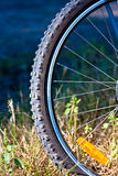 Circle frame tire Stock Photography