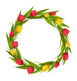 Circle frame with tulips red and yellow flowers  on whit Stock Images