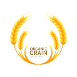 Circle frame of wheat or rye grain. Vector logo or label design. Stock Photography