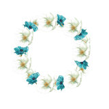 Circle frame of white flowers and blue anemones Royalty Free Stock Photography