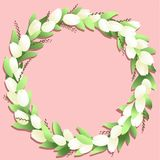 Circle frame with white tulips and springs on the pink backgroun. D Stock Photo