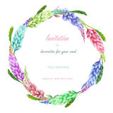 Circle frame, wreath with the floral design; watercolor floral elements of the variegated lupine flowers and spikelets Stock Photo