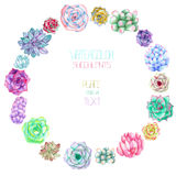 A circle frame, wreath, frame border with the watercolor succulents Royalty Free Stock Image