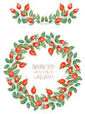 A circle frame, wreath and garland of the watercolor rosehip branches Royalty Free Stock Photography