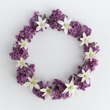 Circle frame, wreath of purple flowers on a white background, greeting card, decoration postcard or invitation Stock Images