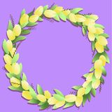 Circle frame with yellow tulips and springs stock illustration