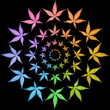 Circle frames of colorful leaves isolated on black. Leaves in rainbow colors Stock Photography