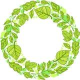 Circle garland of decorative green leaves Stock Photo