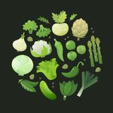 Circle of green vegetables. Fresh green vegetables arranged in circle on dark background. Vector illustration Stock Image