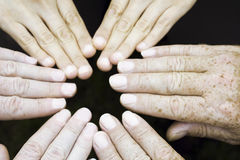 Circle of hands. Circle built of six hands on black background royalty free stock images