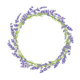 Circle of lavender flowers Royalty Free Stock Photography