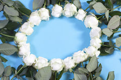 Circle lined with white roses on a blue background. Idea for design Stock Images