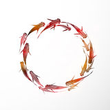 Circle of little red fishes. Circle of little black fishes hand drawn in traditional Japanese style sumi-e Royalty Free Stock Photography