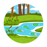 Circle locations, little landscape (summer pond in the woods) Stock Image
