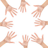 Circle made of hands. Isolated on white background Stock Photos