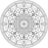 Circle mandala adult coloring page, with palm tree vector illustration