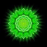 Circle mandala pattern. Anahata chakra. Circle mandala pattern. Anahata chakra vector illustration Stock Photography