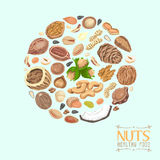 circle of nuts and seeds Royalty Free Stock Image